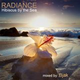 RADIANCE: Hibiscus by the Sea