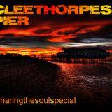 cleethorpes pier & winter gardens pt1
