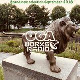 OGAWORKS RADIO Brand new selection September 2018