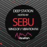 Sebu - Deep Station - Vibration Fm - June 2016 Podcast