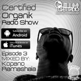 Certified Organik Radio Show 3