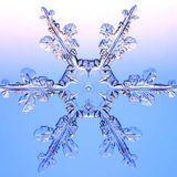 Solsticio de Invierno Mix