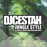 DjCestah Jungle Style