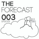 "[003] The Forecast w/ Feels & Vibes - Majestic Meadow Festival Set  [""Open House""]"