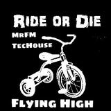 Flying High (TecHouse)