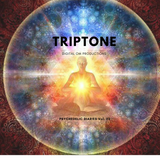 Triptone: Psychedelic diaries vol.2
