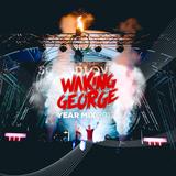 Waking George YearMix 2017 / Positive Vibes Radio Show - 117