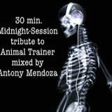 30 min. Midnight Session (tribute to Animal Trainer)