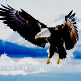 The Trill Eagle Mixtape