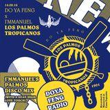 DOYAFENG - Los Palmos Tropicanos (I'mmanuel's Palmos Disco Mix)