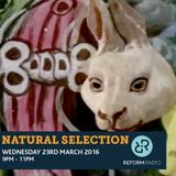 Natural Selection 23rd March 2016