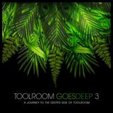 Toolroom Goes Deep 3