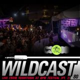 Wildcast 80 - Live from Yoshitoshi BPM Festival 2014 (Part 2)