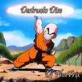Destructo Disc