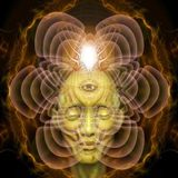 Nirvanush - Psychill Session