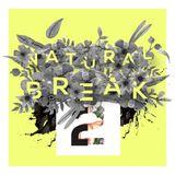 Natural Break @ Promo Mixtape From Sonidos Pixelados By Felipe Castañeda