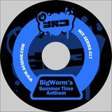 Big Worm - 403 DNB Mix Series # 17 - Big Worm's Summer Time Anthem