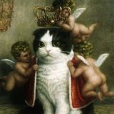 Prince Gato