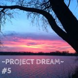 Project Dream #5