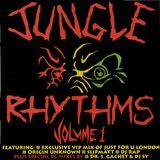 Hidden Shadow - Jungle Rhythms Vol.1 Mix (Hardcore Jungle)