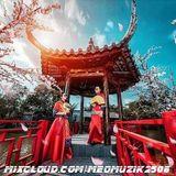 NST - Việt Mix - Hồng Nhan Bạc Phận - Set Nhạc Tâm Trạng - DJ Mèo MuZik On The Mix [Cần Trô Team]
