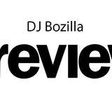 DJ Bozilla - Welcome in the Year 2019 --- PREVIEW ---