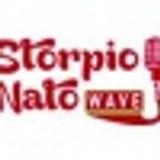 Infonews a Manetta