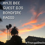 Chillcast Guest DJ for Tranquil Beats on Bondfire Radio (Part 4-5)