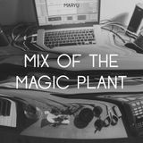 Mix Of The Magic Plant