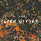 DJ Panda Super Nature Promo Mix 2016