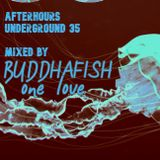 AFTERHOURS UNDERGROUND 35 Mixed by Buddhafish