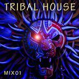Tribal House [Mix 01]