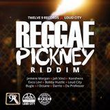 Selekta Faya Gong - Reggae Pickney Riddim mix promo 2017