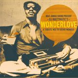 DJ Rhettmatic - Wonderlove: A Tribute Mix To Stevie Wonder