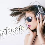 Summer Party Mix By Dj Timz 2013