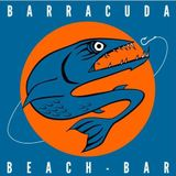 Barracuda Deep Sound - DJ PETE M