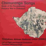 From Chimurenga to Revolution