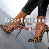 Funky Deep House by Dalager