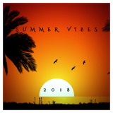 Summer Vibes 2018 @alysoncmoura