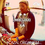 Mixcloud in LA #02: Cazal Organism