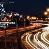"IN YA MELLOW TONE ""TOKYO FM WORLD Vol.2"" mixed by DJ AKAGI"