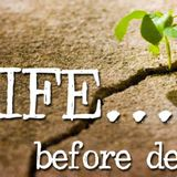 Life Before Death - Audio