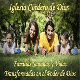 Serie: Familias del Reino de Dios Sesión 7: Solteros del Reino de Dios Parte 2