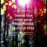 Gernot Dux Vinyl set at TREE HOUSE 10.03.13