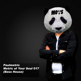 Metric of Your Soul - 017 (Bass house)