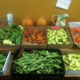 The Ag Census is in, Food Hub Financing Available, Community Garden Magazine