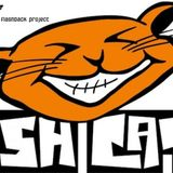 dj sweenee - the flash cats v's the flashback project