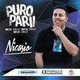 Pitbull Globalization PURO PARI! Guest Mix 2018 (Clean)