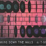 Breaking Down The Walls, 1996
