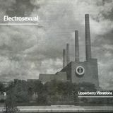 ELECTROSEXUAL | THE ACID FACTORY  (Upperberry Vibrations Podcasts series 2016)